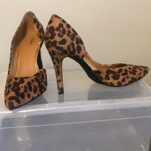 Mossimo Leopard Heels with Gold Detail